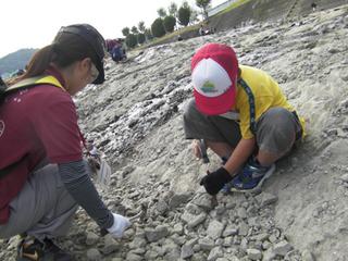 11月3日化石2.JPG