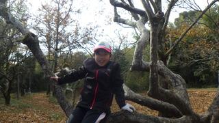 木登り1.jpg