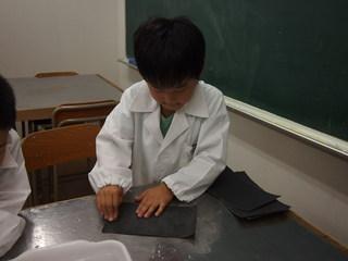2013年06月ガリレオ木2.JPG